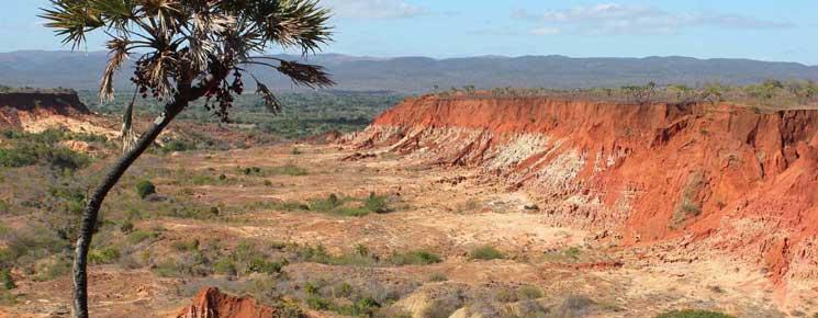 Avant votre voyage à Madagascar : Idées sur les billets d'avion