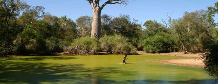 Les sites touristiques les plus visités à Madagascar